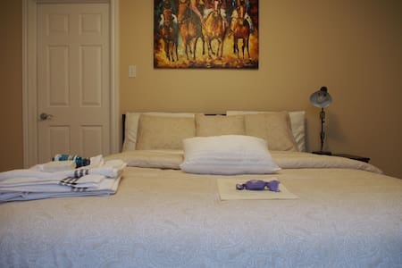 Downtown spacious room w private en-suite Bathroom - Fredericton