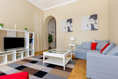 Spacious Apartment in center - Budapest