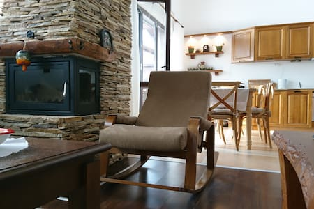 Cozy and spacious penthouse - Bansko