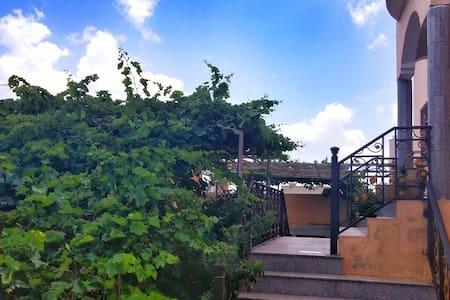 Holiday in Jabal Akhdar - House