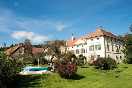 Holiday flat at Schlossgut Gundersdorf - Kasteel