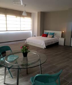 apartamento centro ciudad - Loft