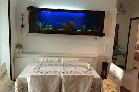 戈壁明珠的温馨小窝 Gobi Pearl cozy home - House