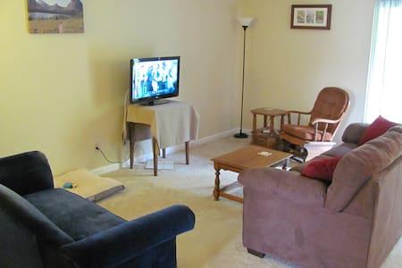 Apartment near Neyland - 녹스빌 - 아파트