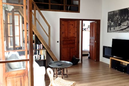 Charming Attic with Mezzanine and large terrace - Palma