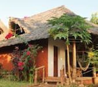 Mbwe roots bungalows - Nungwi
