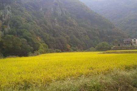 계룡산의 별장형 독채 펜션 정담 - Banpo-myeon, Gongju