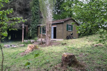 Remote off-grid cabin - House