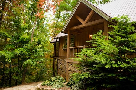Sapphire - A Quiet Splendor Mountain Cabin for 12 - Tiger - Ev