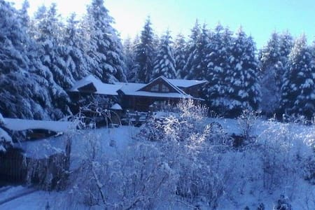 Forest House exclusive - Skhidnytsya - Haus