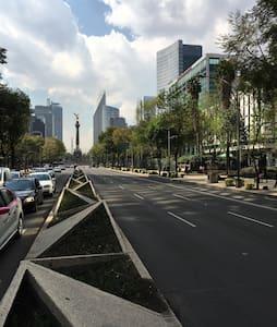 Entire Apartment near US embassy - Ciudad de México - Appartement