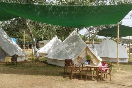 Luxury bell tents - Tält