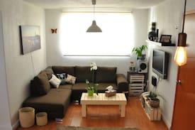 Picture of Comfy Sofa in Roma Condesa