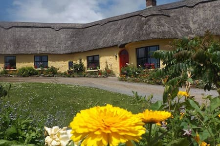Double Room in Thatched Cottage - Bed & Breakfast