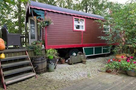 Ideale locatie voor gypsy-ervaring - Andet