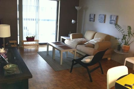 Five minutes walk to Parliament Buildings .Busy neighborhood daytime and quiet evenings.Perfect for traveler who want to discover Ottawa or is coming for work. Close to transit way. Walking distance to all kinds of great restaurants.