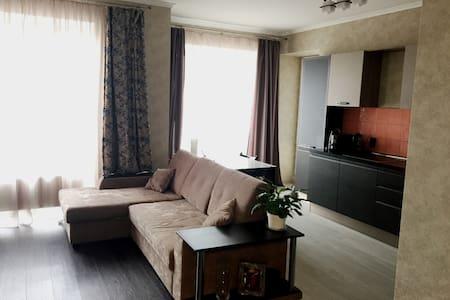 3-комнатная квартира с евроремонтом - Кудрово