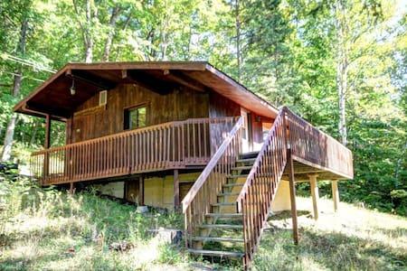 Chalet 1 chambre au lac Sarrazin - Blockhütte