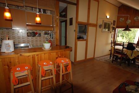 Delizioso appartamento sul monte Terminillo! - Apartment