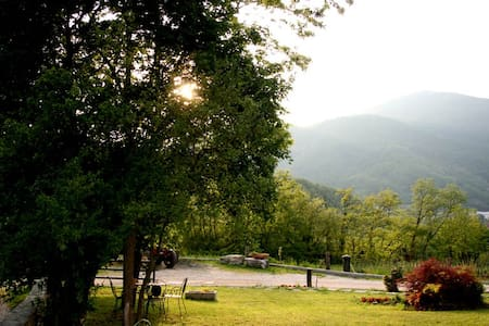 bed and breakfast cascina valsorda - Bed & Breakfast