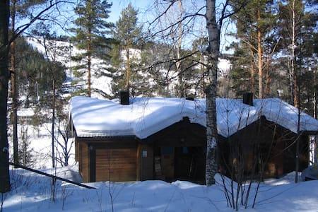 Cozy ski cottage in Tahko - Nilsiä
