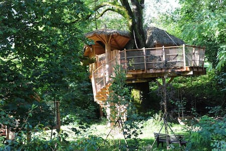 Mathis treehouse - Bed & Breakfast