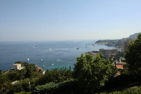Studio near Monaco. - Roquebrune-Cap-Martin