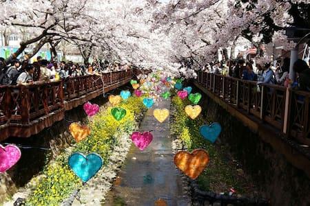 벚꽃축제 군항제 도시 진해에서 가장 아름다운 로망스다리 숙소위치 - Casa