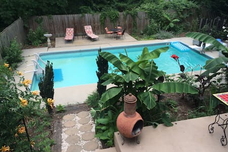 Tropical Oasis in West Asheville - Asheville - House
