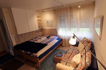 Appartement 5 lits tout confort aux Crosets - Les Crosets