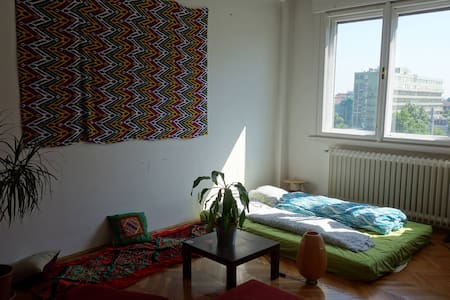 Large Bright Room Near Center - Apartment