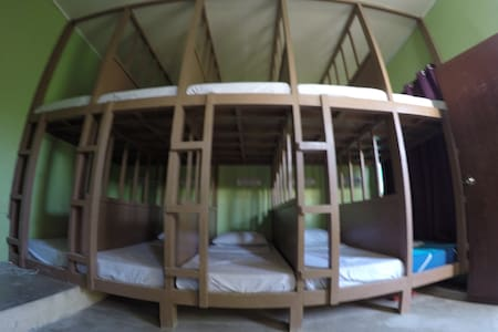 Budget Bunk Beds - Andere