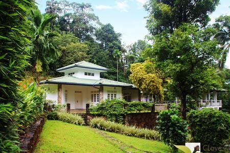 Clovefield Villa, Laxapana - Laxapana - Casa