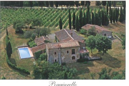 Ruhige Ferienwohnung auf Chiantihügel nähe Siena - Pievasciata - Other