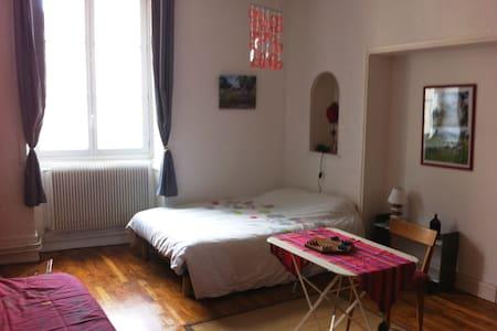 Grande chambre aménagée et lumineuse- centre ville - Lons-le-Saunier