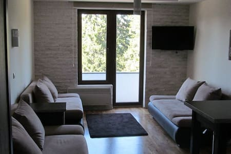 New Apartment in the Center of Kopaonik - Appartement