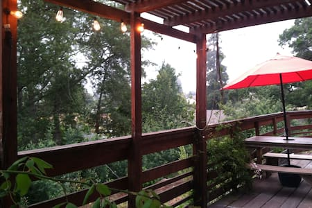 Private room and bath in our funky,rustic secluded home. Double bed+twin air-bed and sofa.Close to Capitola Beach,Wineries and Redwoods.  Use the kitchen, enjoy sunset on the deck OR call the complimentary taxi to the famous ShadowBrook Restaurant!