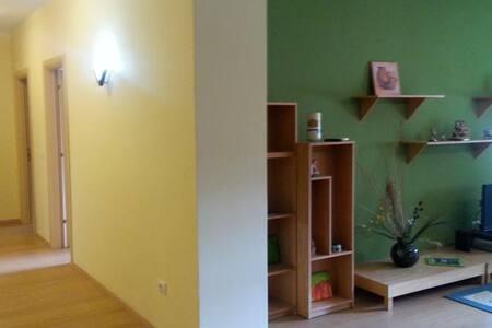 Durres City Apartment