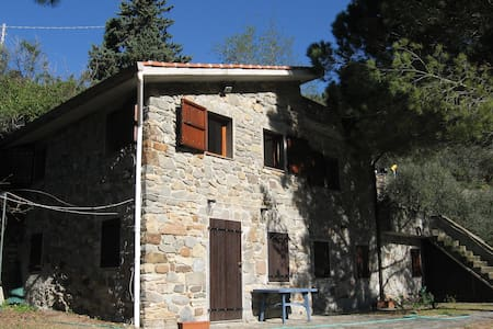 The Olive Apartment