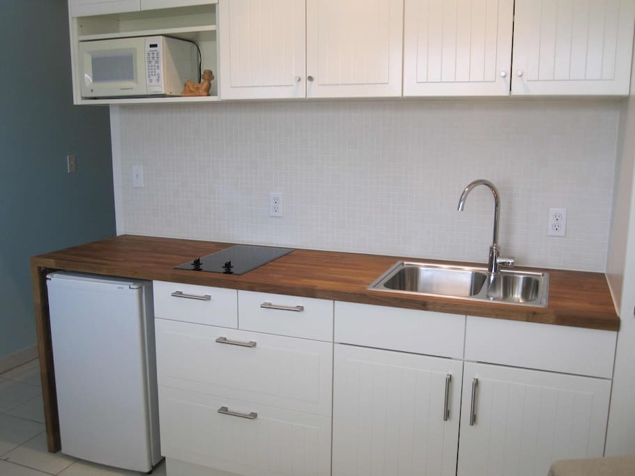 Kitchen with microwave, 2 burner stove and bar fridge.