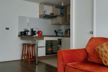 Cozy room in Santiago downtown, adults only (18+) - Santiago - Appartamento