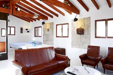 Cozy penthouse loft with terrace - Palma de Majorque