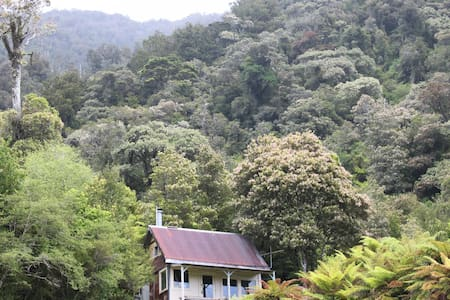Tom's Hut, MANZONI, Kawhaka Valley. - Kawhaka Valley - Hut