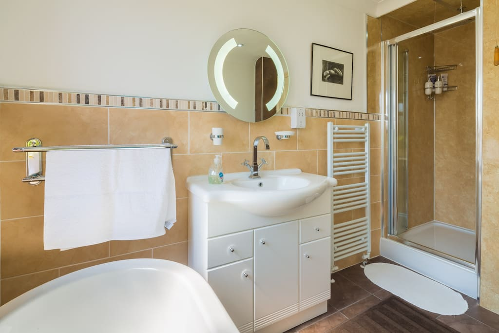 Bathroom showing the sink and the shower