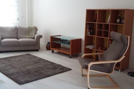 Cosy Stylish flat,close to center - Apartamento