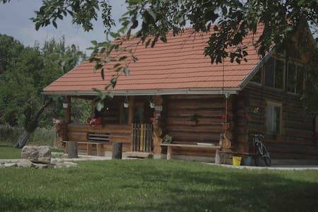 Transylvania Log House - Cabin