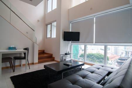Anson Premium 1 Bed Apt Loft AC - Singapore
