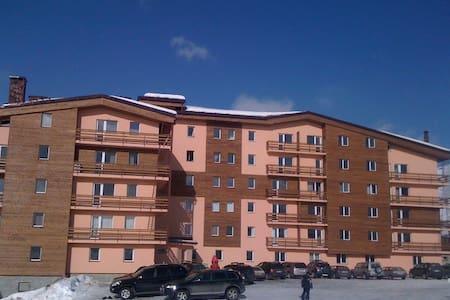 Квартира на горном склоне Гудаури - Huoneisto