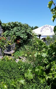 Summer Tents by the river & stable - Kelso