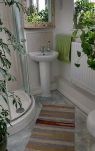 Ground floor shower room - Saint Dominick